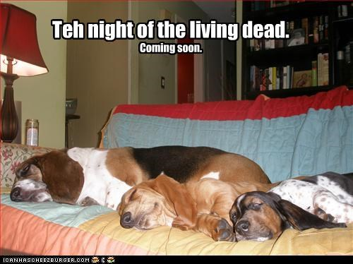 Teh night of the living dead. Coming soon.