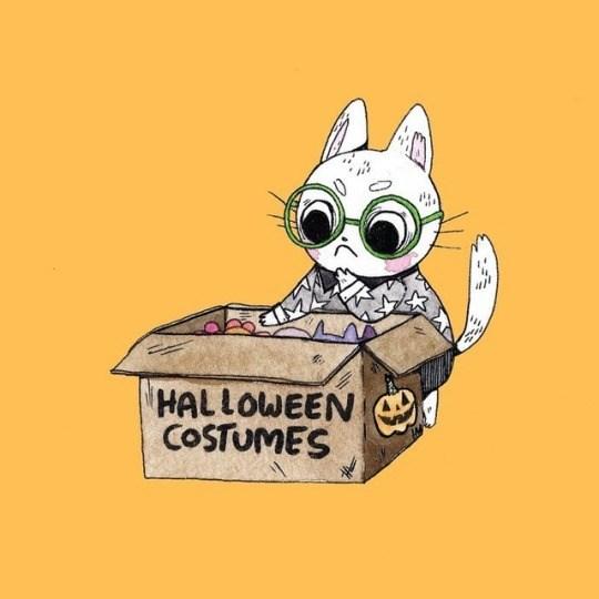 comics of a cat opening costumes box