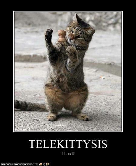 TELEKITTYSIS I has it