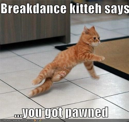 breakdance dancing lolkittehs - 3740783360