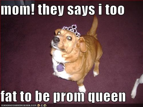 Mom They Says I Too Fat To Be Prom Queen Cheezburger Funny