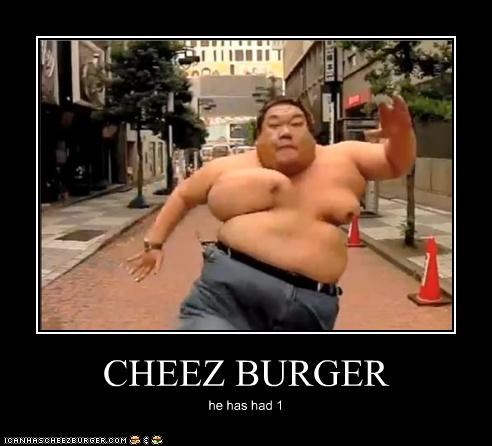 Cheezburger Image 3745140224