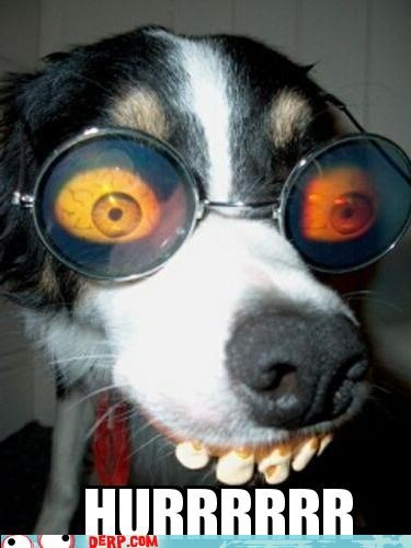 critters disguise dogs glasses teeth