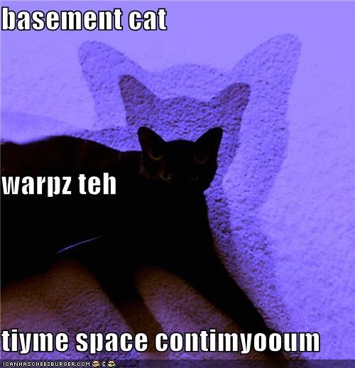 basement cat oh noes space time travel - 3747987968