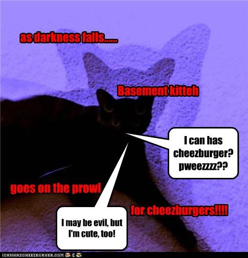 Cheezburger Image 3748118784