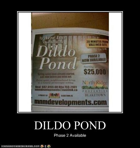 DILDO POND Phase 2 Available