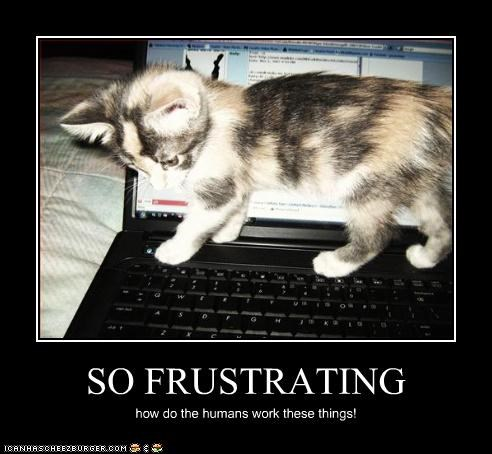 SO FRUSTRATING how do the humans work these things!
