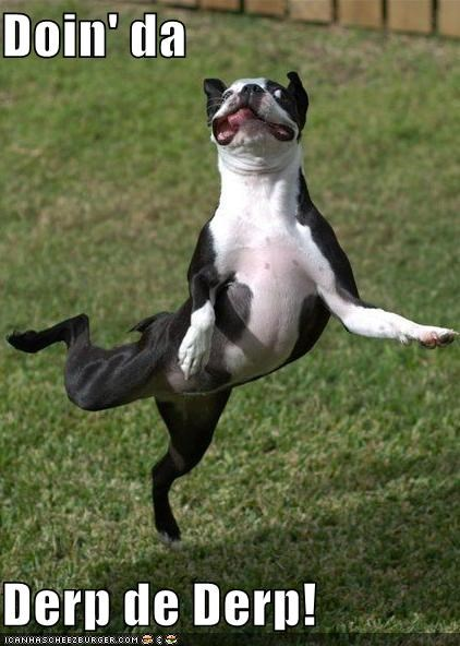 ballerina,critters,dance,dogs