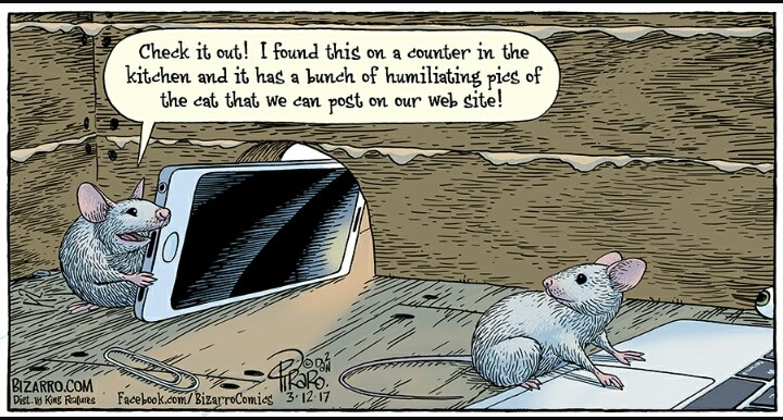 Funny comics from Bizarro Comics.