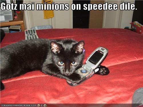 basement cat minions phone - 3751705344