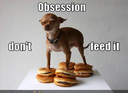 Cheezburger Image 3752471296