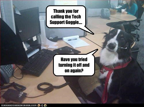 Thank you for calling the Tech Support Goggie.... Have you tried turning it off and on again?