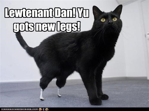 caption captioned cat Forrest Gump Hall of Fame legs lieutenant dan new prosthetics - 3754754560