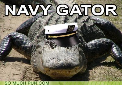 alligator navy nice hat puns