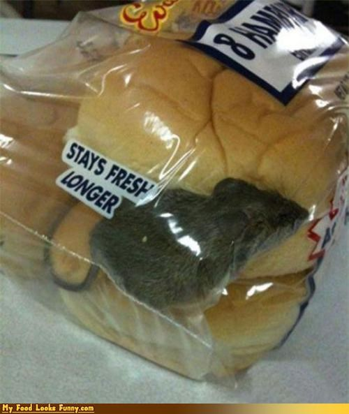 animal bag bread fresh gross infested mouse rodent rolls stays fresh