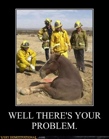 animals,emergency,fireman,horse,silly-horse-you-dont-belong-there