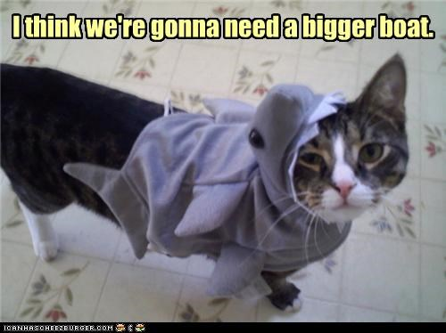 bigger,boat,caption,captioned,cat,costume,dressed up,need,shark,think