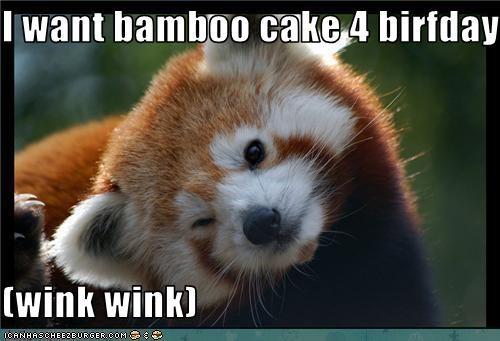 I want bamboo cake 4 birfday  (wink wink)