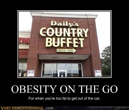 OBESITY ON THE GO For when you're too fat to get out of the car.
