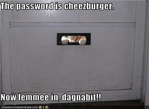 Cheezburger Image 3769940992