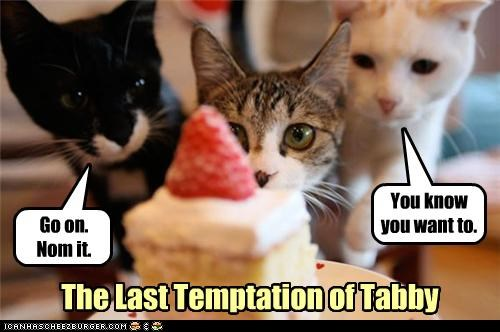 cake,caption,captioned,cat,Movie,noms,novel,parody,tabby,temptation,tempted,the last temptation