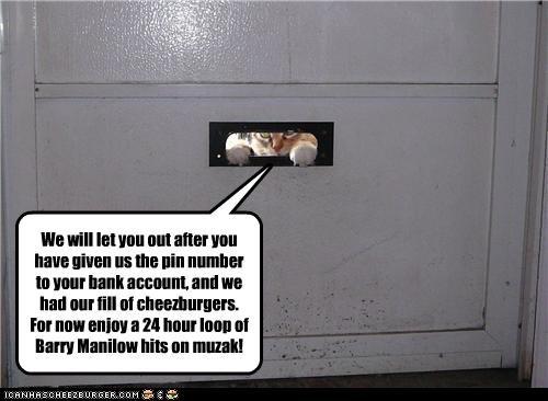 Cheezburger Image 3771087360