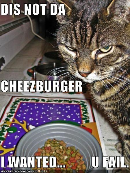 Cheezburger Image 3771496448