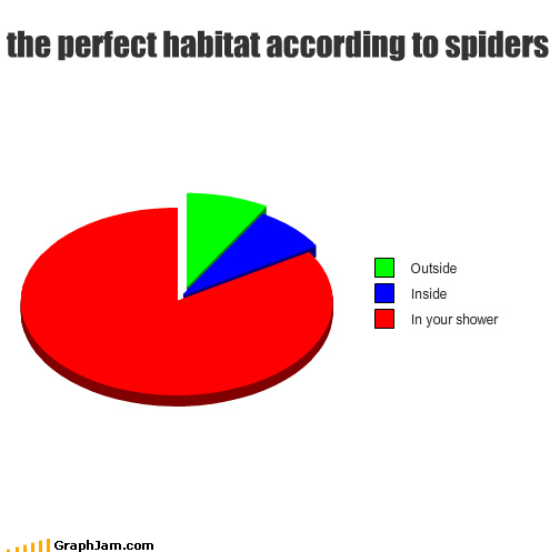 girly scream,hygiene,Pie Chart,shower,spider