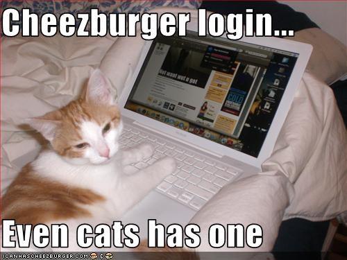 Cheezburger Image 3774215424
