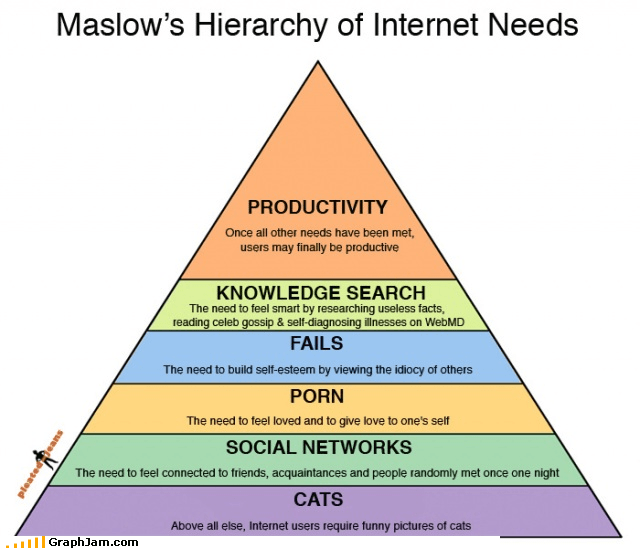 hierarchy infographic internet made of cats rules