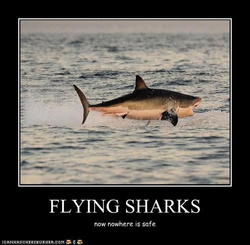 FLYING SHARKS now nowhere is safe
