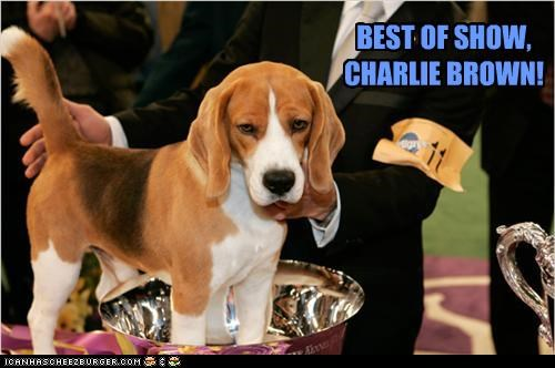 BEST OF SHOW, CHARLIE BROWN!