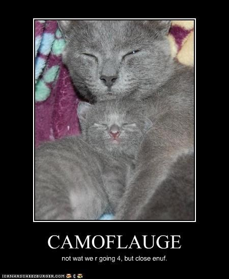 CAMOFLAUGE not wat we r going 4, but close enuf.