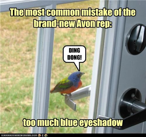 avon,bird,blue,caption,captioned,common,doorbell,door to door,eyeshadow,makeup,mistake,rep,representative,sales,too much