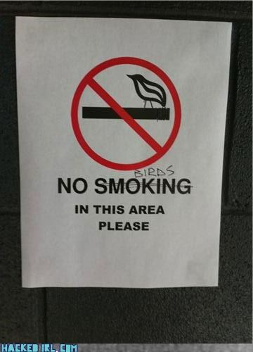 no smoking - 3778969344