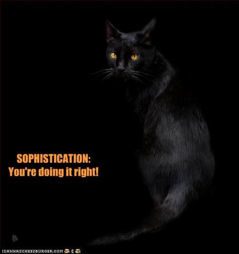 SOPHISTICATION: You're doing it right!