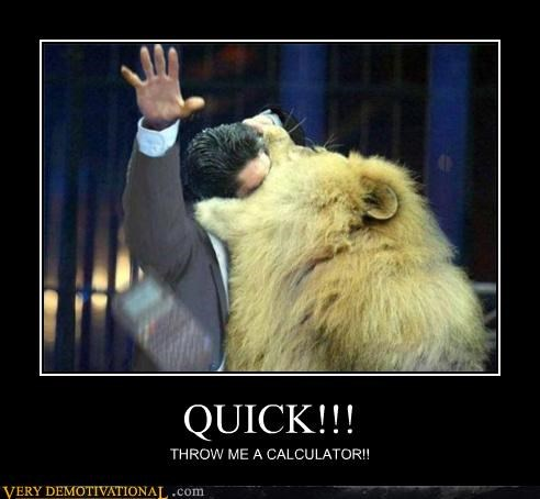 calculator danger FAIL hilarious lion ouch whoops