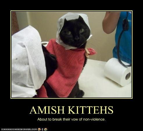 AMISH KITTEHS About to break their vow of non-violence.