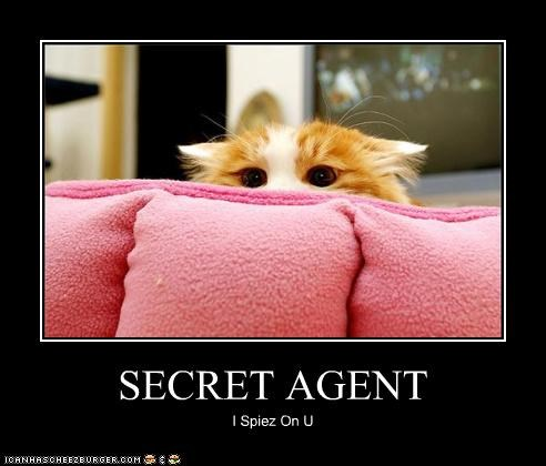 secret agent spy spying - 3781629696