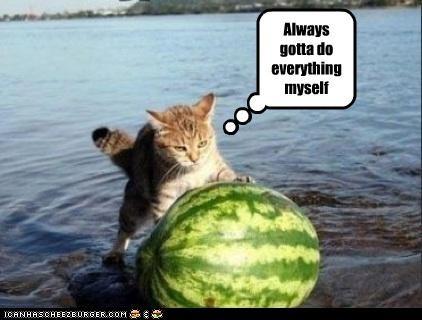 angry watermelon work - 3781632768