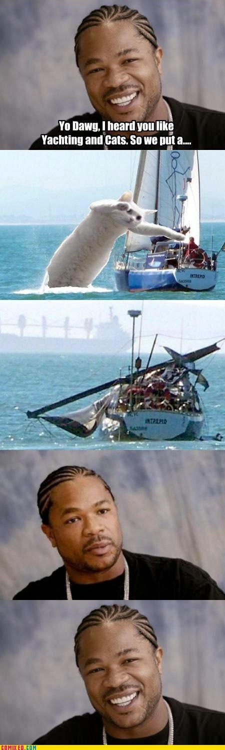 animals,boat,danger,disaster,long cat,whale,Xxzibit,xzhibit
