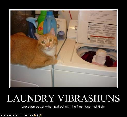 LAUNDRY VIBRASHUNS are even better when paired with the fresh scent of Gain