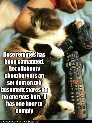 Cheezburger Image 3783363072