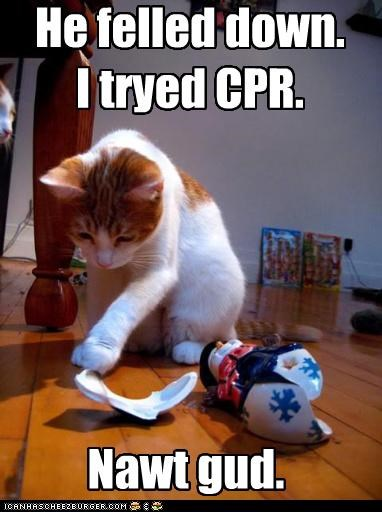 He felled down. I tryed CPR.