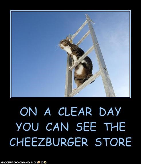 ON A CLEAR DAY YOU CAN SEE THE CHEEZBURGER STORE