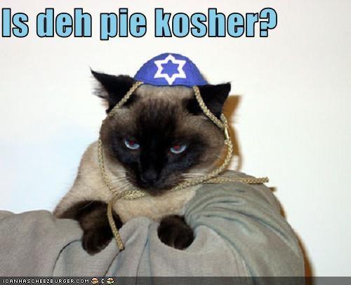 Cheezburger Image 3786454528