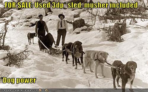 Cheezburger Image 3786673664