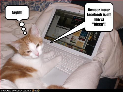 "Argh!!! Awnser me or facebook is off line ya ""Bleep""!"