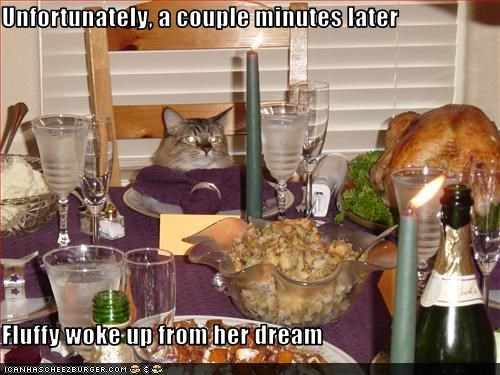 caption dream fud thanksgiving want - 3787999488