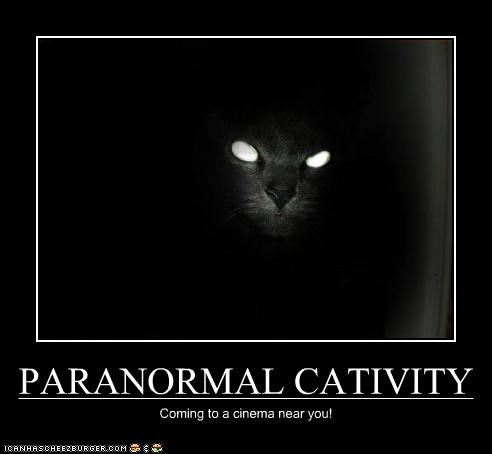 PARANORMAL CATIVITY Coming to a cinema near you!